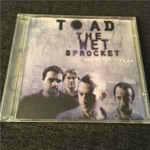Mp3 Toad The Wet Sprocket - Whatever I Fear